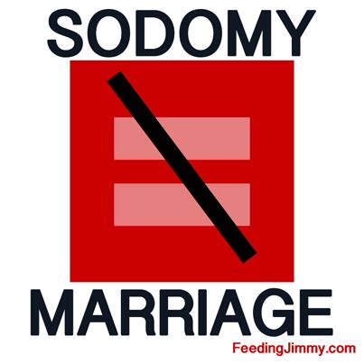 Essay: For or Against Gay Marriage